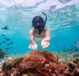 Guaranteed Fun ! at Samaesarn Bay Half Day Snorkeling trip