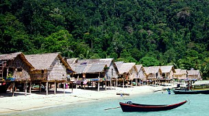 Compact Surin Islands Day Tour by Speedboat(Most Valued)